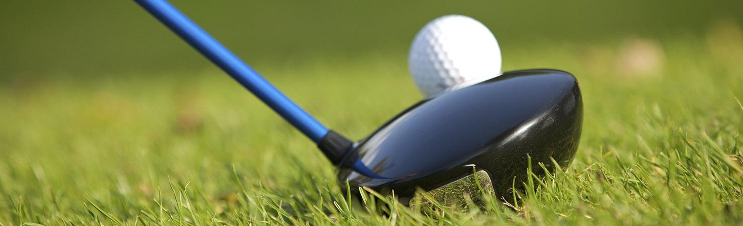 madera golf palo